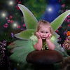 Fairy Photos : Have your child's portrait taken dressed as a fairy!! Use the BUY button to purchase!